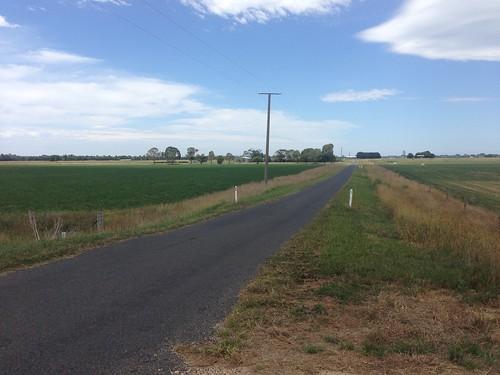 gippslandplainsrailtrail railtrail cowwarr road field
