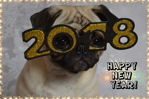 Happy New Year! Bonne Année Mes Amis! | by DaPuglet