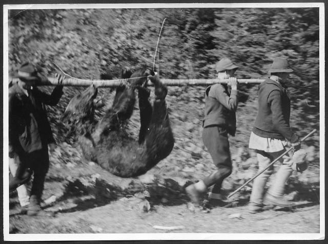 Archiv O684 Bärenjagd in den Karpaten, 1930/31