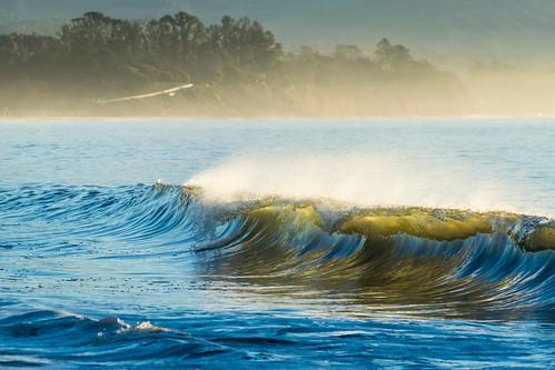 california nikon nikond5300 outdoor pacificocean santabarbara beach geotagged nature ocean vacation water wave unitedstates tree trees mist morning