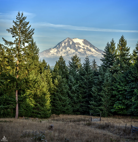 backyard feature family homestead property seattle mt mount rainier hdr photomatix on1 mountain volcano view viewpoint scenic j2 trees