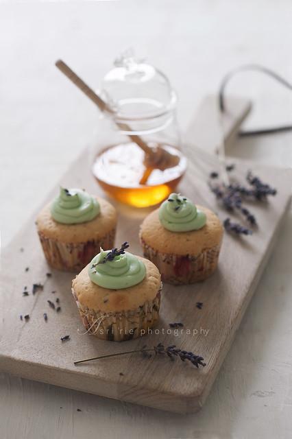 lavender & honey cupcake