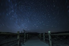 Joshua Tree Star Trails