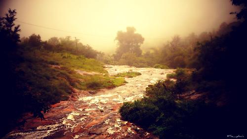india kerala tamilnadu sonyslta58 munnar nature water hill hills station fog