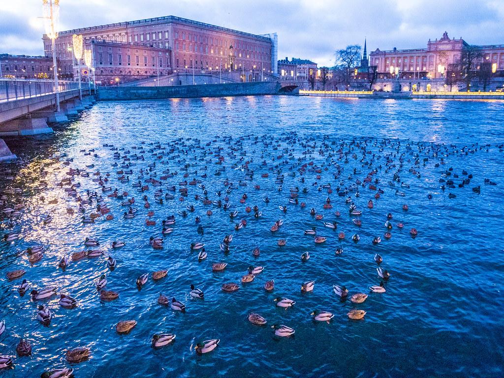 Strömgatan sunrise, Stockholm Sweden (Royal Palace in background)