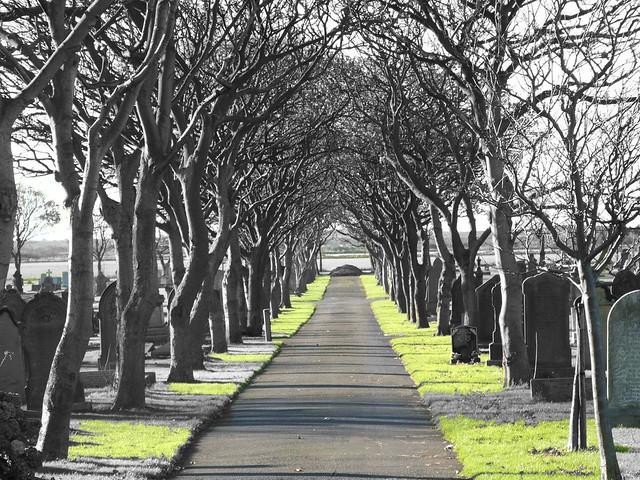 Cemetery Avenue (Blyth)