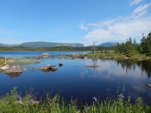Gros Morne NP - Berry Hill Pond Trail -1