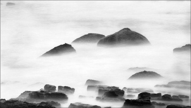 F_47A2296.-BW-2-Canon 5DIII-Canon 70-300mm-May Lee 廖藹淳