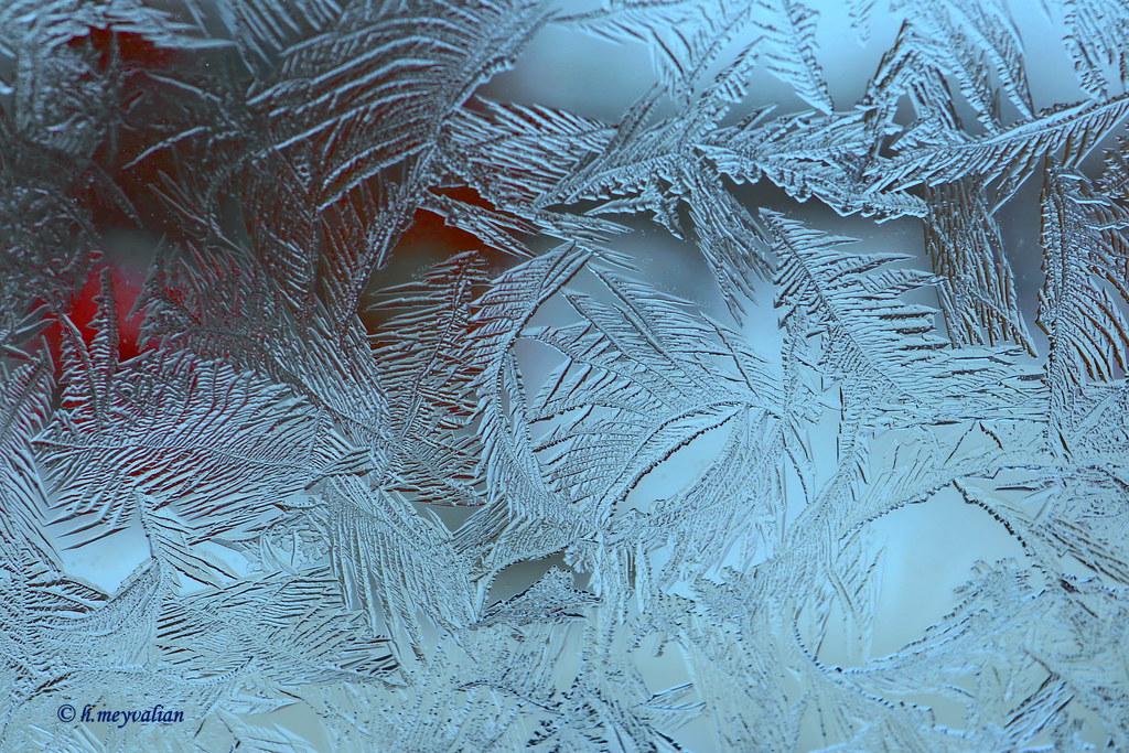 Fiori Di Ghiaccio Sulla Mia Finestra Ice Flowers On My W