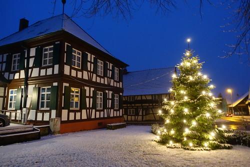 the christmas tree (3)