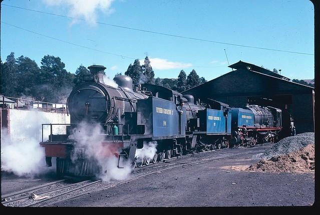 Vryheid Coronation Ltd Colliery (South Africa) - Steam locomotives Nrs. 4, 5 & 1