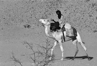 Nostalgie saharienne