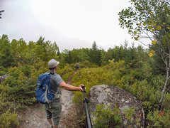 Norawarren SingleTrack Trails
