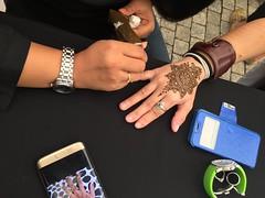 Global Voices Summit 2017:Day 1, Henna