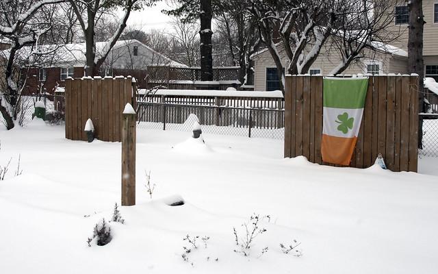 Backyard, Feb 11, 2018