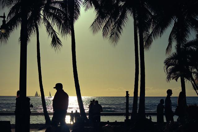 Honolulu Silhouettes