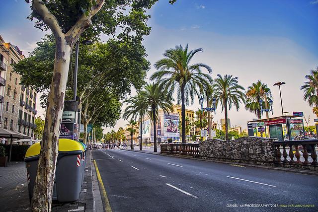Paseo Colón, Barcelona