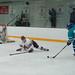 Auburn Hockey Sectional vs Oswego