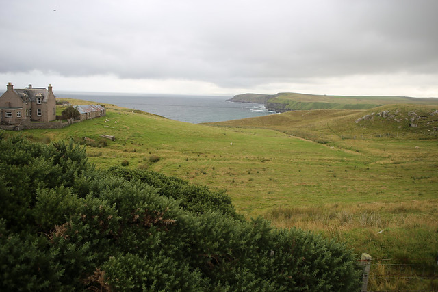 View from the road to Strathy Point