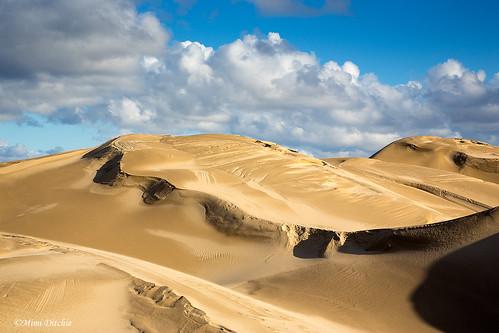 oceanodunes clouds dunes sanddunes landscape getty gettyimages mimiditchie mimiditchiephotography