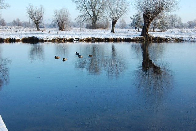 winter fairy tale (4)
