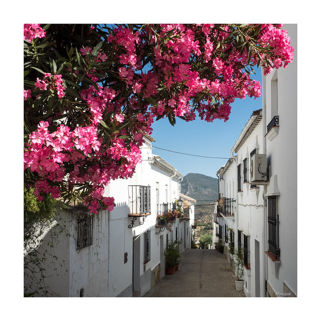 Street of Zahara de la Sierra