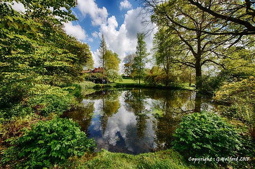 nationaltrust wightwickmanor gardens lake hdr nikon d750 clouds trees bushes reflections tree wood sky grass landscape pool pond surround rural water staffordshire lovely reflection beautiful tranquil tranquility staffs england peaceful lazyafternoon bright clear scene view faves faved tranqulility leaves britain greatbritain detail detailed scenery strong fab fabulous wow english british gb uk round