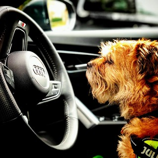 In the driving seat | by michaeljoakes