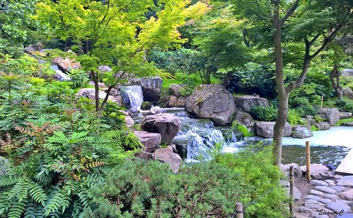 japanesekyotogarden hollandpark waterfall london nokialumiaphone august2017