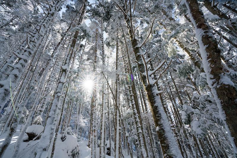 冬の八ヶ岳の登山道