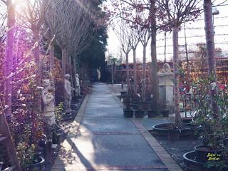 Königliche Gartenakademie Berlin | by Jenny@bitaravberlin