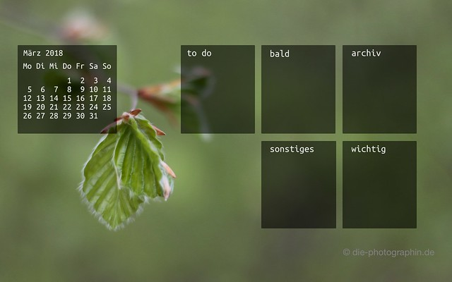 maerz2018-baumknospen-organizedDesktop-wallpaperliebe-diephotographin