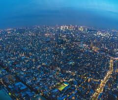 Sumida Skytree Twilight