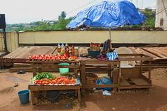 tomates et piments