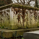 Tomb ivy | West Norwood Cemetery-6