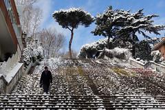 scalinata viale glorioso