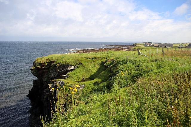 The coast near Scarfskerry