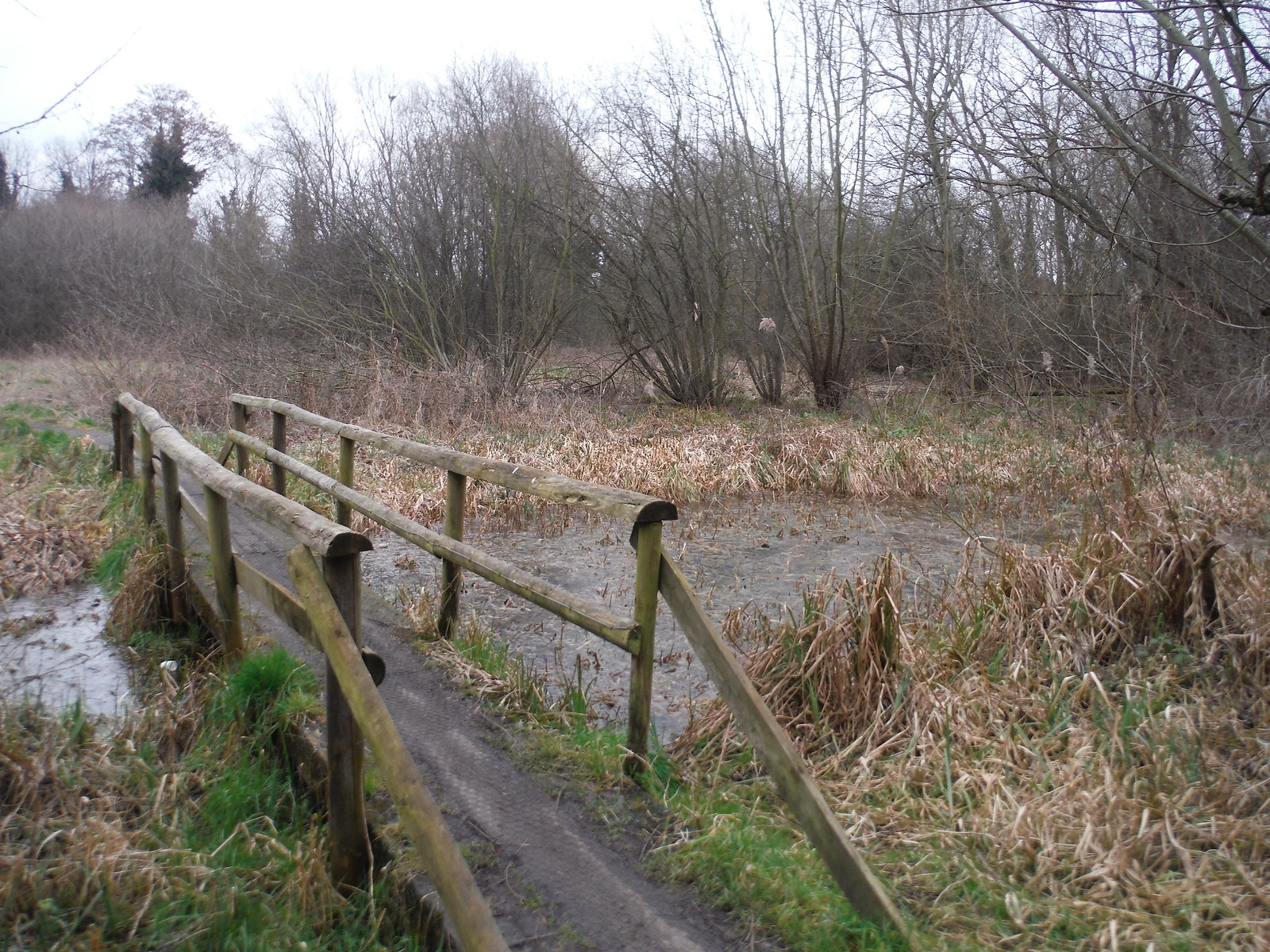 Bridge across Mire, near River Rom SWC Short Walk 33 - Dagenham Parks, Rivers and Ponds