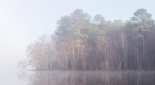 earlymorning bondpark mist cary northcarolina
