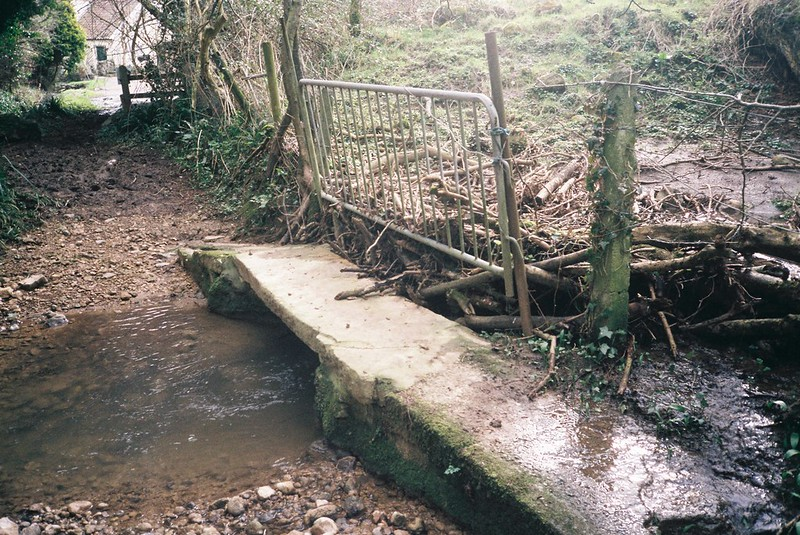 Human beaver dam