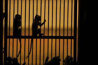Les temples Kmers de Lopburi les singes sont dehors pas en cage! | by Jean mi...