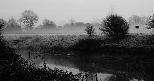 clevedon northsomerset england uk outdoors riverbank water sky mist fog morning blackandwhite blackwhite bw monochrome nature trees countryside grass sony a6000 landscape gb greatbritain frost