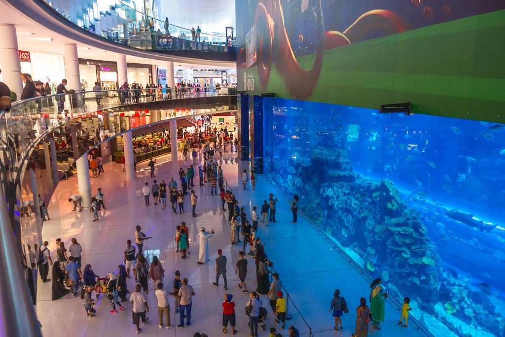Dubai Mall, Aquarium   Inside Dubai Mall, what a aquarium   Peter_069    Flickr