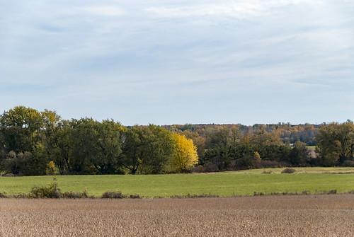 autumn princeedwardcounty ontario canada farm field weathered country rural farmland