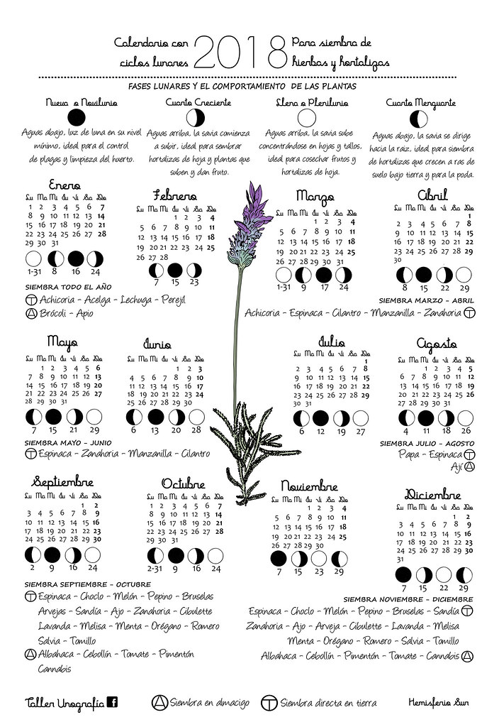 Calendario Lunar De Siembra.Calendario Con Ciclo Lunar Para Siembra De Hierbas Y Horta Flickr