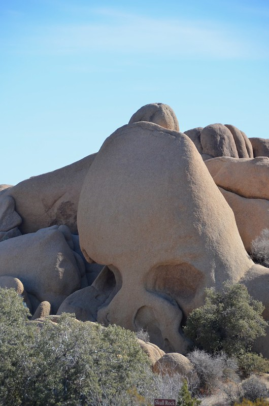 Joshua Tree - skull rock