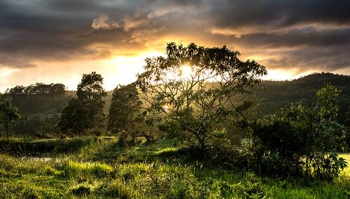 sunrise landscape bright sun tree grass green yellow orange hdr clouds sky rain wet water dam rays shadows farm nsw australia nikon d7100