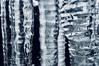 Icicles all in a row.