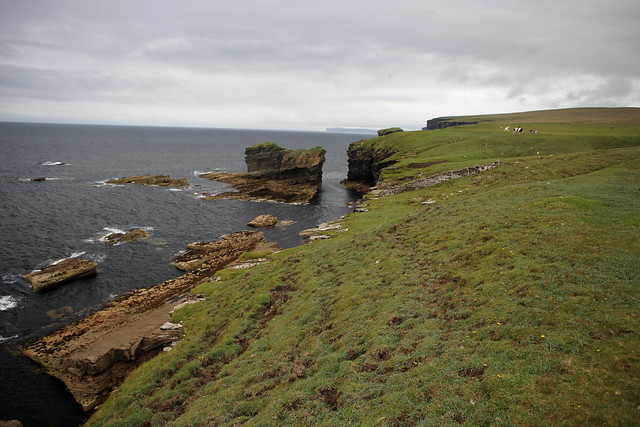 The coast between Brims and Scrabster