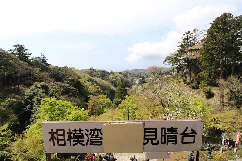 20170415_鎌倉アルプス_0161.jpg